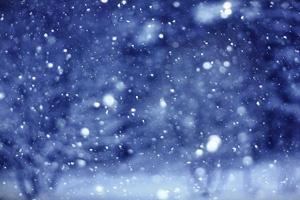 La trêve hivernale selon les français